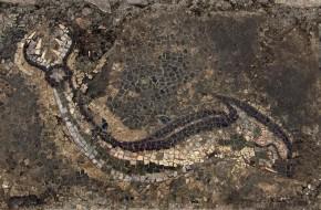 """Helenistinė """"Drakonų ir delfinų"""" salė Graikijoje"""