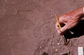 """Uzbekijoje sulaikyti """"juodieji archeologai"""""""