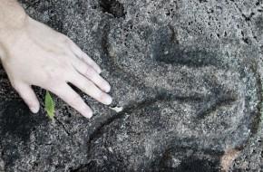 Valiulio akmens ženklai